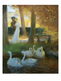 A Couple and Swans
