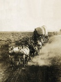 Covered Wagons on the Plains Going West