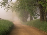 Fog Over Rural Road in Great Smoky Mountains