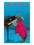 Poodle Playing Piano  Retro