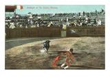 Bullfight  Tijuana  Mexico