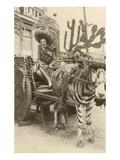 Woman in Zebra Cart  Tijuana  Mexico
