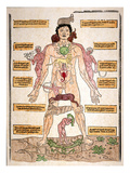 Bloodletting Chart  1493