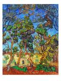Van Gogh: Hospital  1889