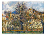 Pissarro: Garden  1877