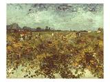 Van Gogh: Vineyard  1888