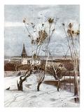 Savrasov: Ravens  1871
