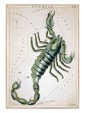Constellation: Scorpio