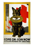 Red Cross Poster  1917