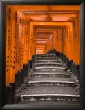 Torii Gates  Fushimi Inari Taisha Shrine  Kyoto  Honshu  Japan
