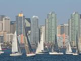 Fleet of Sailboats and Skyline of San Diego  California  Usa