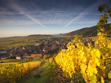 Riquewihr  Alsatian Wine Route  Alsace Region  Haut-Rhin  France