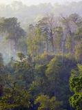 Sulawesi Tangkoko Rainforest  Sulawesi