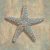 Aqua Starfish