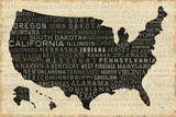 USA V Reproduction d'art par Jess Aiken