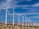 Wind Farm  Palm Springs  California  United States of America  North America