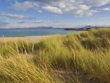 Sand Dunes and Dune Grasses of Mellon Udrigle Beach  Wester Ross  North West Scotland