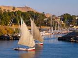 River Nile  Aswan  Upper Egypt  Egypt  North Africa  Africa