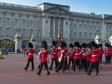Changing of the Guard  Buckingham Palace  London  England  United Kingdom  Europe