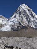 Yak on a Trail Below Kala Pattar and Pumori  7165M  Sagarmatha National Park  Himalayas