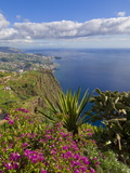 Looking Towards Funchal From Cabo Girao  One of the World's Highest Sea Cliffs  Portugal