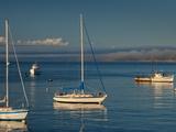 Monterey  California  United States of America  North America