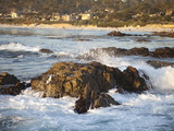 Rocky Coast Along Ocean Drive in Carmel  California  United States of America  North America