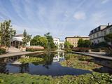 Botanical Gardens  Bonn  North Rhineland Westphalia  Germany  Europe
