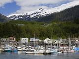 Thomas Basin Boat Harbor in Ketchikan  Southeast Alaska  United States of America  North America