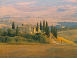 Sunset Near San Quirico D'Orcia  Val D'Orcia  Siena Province  Tuscany  Italy  Europe
