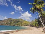 Fisherman on a Palm-Fringed Beach  Englishmans Bay  Tobago  Trinidad and Tobago