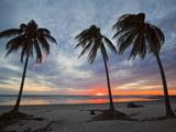 Playa Guiones Beach  Nosara  Nicoya Peninsula  Guanacaste Province  Costa Rica