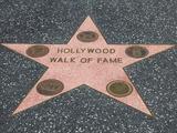 Hollywood Walk of Fame  Hollywood Boulevard  Los Angeles  California