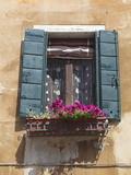 Window and Shutters  Venice  Veneto  Italy  Europe