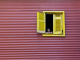 Child at a Window  La Boca  Buenos Aires  Argentina  South America