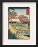 Japan: Maple Trees  1858