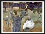 Gauguin: Martinique  1887