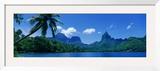 Lush Foliage and Rock Formations  Moorea Island  Tahiti