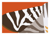 Uphill Zebra
