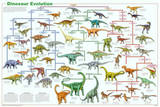 Dinosaur Evolution Educational Science Chart Poster