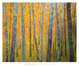 Forest Verticals