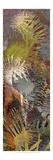 Thistle Panel I Reproduction d'art par James Burghardt