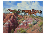 Colored Clay and Quarterhorses