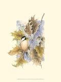 Chickadee and Oak Leaves