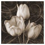 Tulip and Swirls II