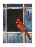 Cardinal Window Reproduction d'art par Chris Vest