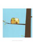 Treetop Owls IV
