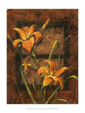 Day Lily II