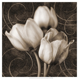 Tulip and Swirls I