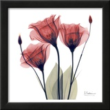 Gentian Trio in Red